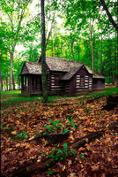 Cabin_watoga-sjs-02_up_medium