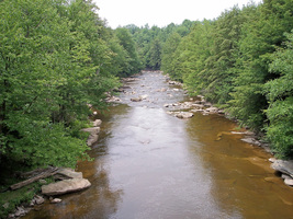 Blackwater_river_blackwater_falls_state_park_west_virginiap_medium