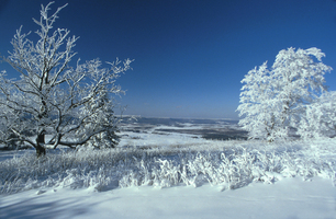 Bald_knob_winter_sjs_medium