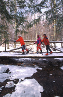Cross_country_skiing_sjs_p_medium