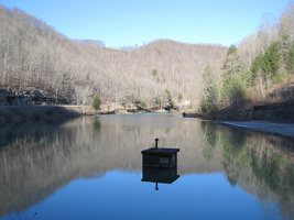 Laurel_lake_wma_-_laurel_lakep_medium