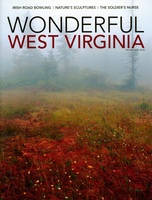 Wonderfulwv001p_medium