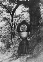 Flatwoodsmonster_medium