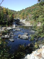 Buckhannonrivermouth_medium