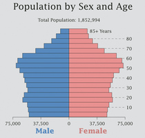 2010census_sex_age_medium