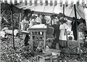 Peach_packing_hampshireco_1910_medium